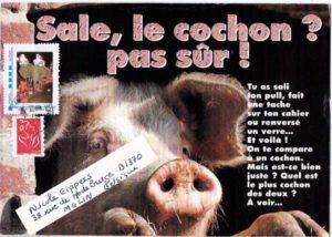 art postal thème cochon