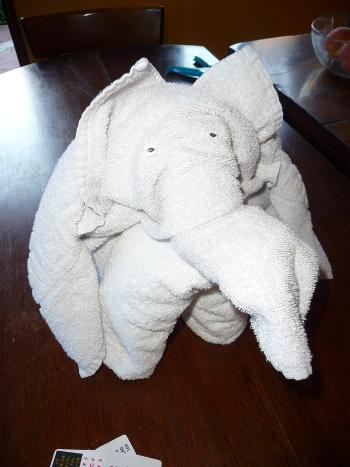 L phant de serviette at barrissements - Serviette de bain jalla ...