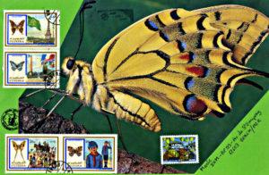 papillon 437