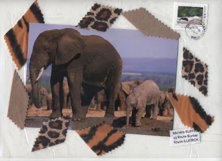 elephant_2014_01 (24)